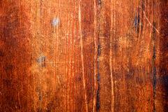 παλαιό δάσος ανασκόπησης Στοκ εικόνες με δικαίωμα ελεύθερης χρήσης