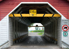 παλαιό δάσος γεφυρών Στοκ εικόνα με δικαίωμα ελεύθερης χρήσης