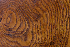παλαιό δάσος σιταριού Στοκ εικόνες με δικαίωμα ελεύθερης χρήσης