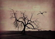 παλαιό δέντρο εγγράφου grunge π Στοκ φωτογραφίες με δικαίωμα ελεύθερης χρήσης