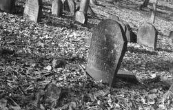 Παλαιό εβραϊκό νεκροταφείο σε BÄ™dzin, Πολωνία στοκ φωτογραφία με δικαίωμα ελεύθερης χρήσης