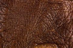 Παλαιό εκλεκτής ποιότητας γνήσιο μαλακό καφετί υπόβαθρο σύστασης δέρματος, τοπ στρώμα με τους πόρους και τις γρατσουνιές, μακροεν στοκ εικόνα