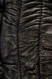 Παλαιό εκλεκτής ποιότητας γνήσιο μαλακό μαύρο υπόβαθρο σύστασης δέρματος, τοπ στρώμα με τους πόρους και τις γρατσουνιές, μακροεντ στοκ φωτογραφίες με δικαίωμα ελεύθερης χρήσης
