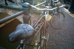 Παλαιό κάθισμα ενός ποδηλάτου Στοκ Εικόνες
