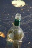 Παλαιό κενό μπουκάλι κρασιού Στοκ Φωτογραφία