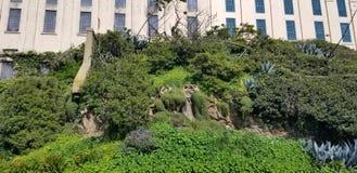Παλαιό κτήριο με τα μέρη της βλάστησης στοκ εικόνες