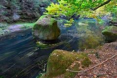 Παλαιό μαγικό forst με τα περιερχόμενα πορτοκαλιά φύλλα στον ποταμό Μυστικό δάσος φθινοπώρου στοκ φωτογραφίες με δικαίωμα ελεύθερης χρήσης