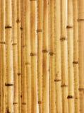 Παλαιό μπεζ τεμάχιο φραγών μπαμπού Στοκ Εικόνα