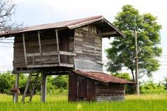 Παλαιό ξύλινο σπίτι στον ορυζώνα ρυζιού κοντά στο δέντρο Στοκ Εικόνα