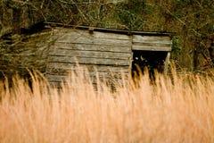 Παλαιό ξύλινο υπόστεγο που κρύβεται από την ψηλή χλόη Στοκ Εικόνες