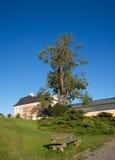 παλαιό πάρκο πάγκων thepalace στοκ εικόνα με δικαίωμα ελεύθερης χρήσης