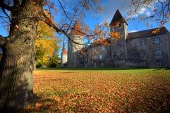 παλαιό πάρκο πόλεων φθινοπ Στοκ εικόνα με δικαίωμα ελεύθερης χρήσης