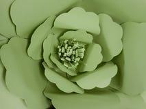 παλαιό παράθυρο σύστασης λεπτομέρειας ανασκόπησης ξύλινο Λουλούδι χρώματος εγγράφου, πράσινο Στοκ Εικόνες
