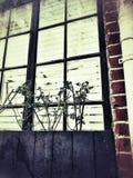 Παλαιό παράθυρο house's Στοκ Φωτογραφίες