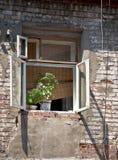 παλαιό παράθυρο wal τούβλο&upsil Στοκ Εικόνες