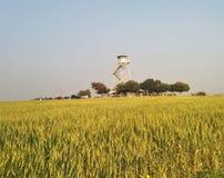 Παλαιό παρατηρητήριο στη μέση του τομέα σίτου στοκ φωτογραφία με δικαίωμα ελεύθερης χρήσης