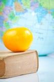 παλαιό πορτοκάλι βιβλίων Στοκ φωτογραφία με δικαίωμα ελεύθερης χρήσης