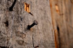 Παλαιό σκουριασμένο καρφί που σφυρηλατείται στη σανίδα στοκ φωτογραφίες