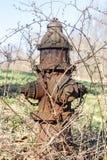 Παλαιό σκουριασμένο στόμιο υδροληψίας, σε έναν τομέα στην εκτός κράτους Νέα Υόρκη στοκ εικόνα