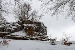 Παλαιό υπόστεγο σε ένα πράσινο λιβάδι το χειμώνα Στοκ εικόνες με δικαίωμα ελεύθερης χρήσης