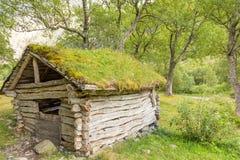 Παλαιό υπόστεγο Στοκ Εικόνες