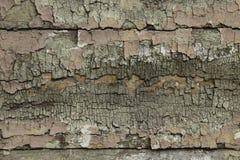 Παλαιό χρώμα στο ξύλινο υπόβαθρο πινάκων Στοκ Φωτογραφία