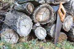 Παλαιό handsaw που στηρίζεται σε έναν σωρό της ξύλινης ξυλείας στοκ εικόνες
