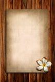 παλαιό plumeria εγγράφου Στοκ εικόνα με δικαίωμα ελεύθερης χρήσης