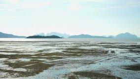 Παλιρροιακή λάσπη επίπεδη στην Ταϊλάνδη φιλμ μικρού μήκους
