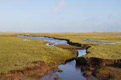 Παλιρροιακός κολπίσκος ελιγμού στοκ εικόνα