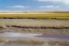 Παλιρροιακός κολπίσκος στοκ εικόνες