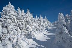 Παλιό χιονισμένο ίχνος στοκ φωτογραφία με δικαίωμα ελεύθερης χρήσης