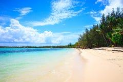 Πανέμορφη ακτή σε Punta Cana Στοκ φωτογραφία με δικαίωμα ελεύθερης χρήσης