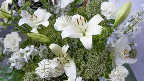 Πανέμορφη ανθοδέσμη των άσπρων κρίνων και των λουλουδιών γαρίφαλων στοκ εικόνες με δικαίωμα ελεύθερης χρήσης