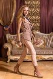 Πανέμορφη κυρία στο μπαρόκ ορισμένο δωμάτιο Στοκ Εικόνες