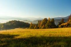 Πανέμορφη ομιχλώδης ανατολή στα βουνά Καλό θερινό τοπίο Λουλούδια στα χλοώδη λιβάδια και δασικός λόφος στην ομίχλη στοκ φωτογραφίες με δικαίωμα ελεύθερης χρήσης
