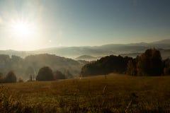 Πανέμορφη ομιχλώδης ανατολή στα βουνά Καλό θερινό τοπίο Λουλούδια στα χλοώδη λιβάδια και δασικός λόφος στην ομίχλη στοκ φωτογραφίες