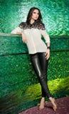 Πανέμορφη πρότυπη τοποθέτηση brunette στο σύγχρονο πράσινο κατασκευασμένο τοπίο στοκ εικόνα