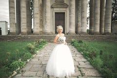 Πανέμορφη ρομαντική ευγενής μοντέρνη όμορφη καυκάσια νύφη στο αρχαίο μπαρόκ κάστρο υποβάθρου Στοκ Εικόνα