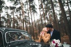 Πανέμορφος η τοποθέτηση νυφών και νεόνυμφων στο δάσος πεύκων κοντά στο αναδρομικό αυτοκίνητο στη ημέρα γάμου τους Στοκ εικόνα με δικαίωμα ελεύθερης χρήσης
