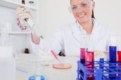 Πανέμορφος κοκκινομάλλης επιστήμονας που χρησιμοποιεί ένα σιφώνιο στοκ εικόνες
