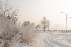 Πανέμορφος παγετός στα δέντρα Στοκ εικόνες με δικαίωμα ελεύθερης χρήσης