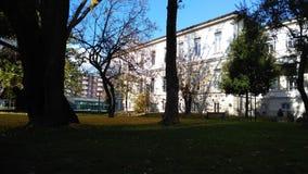 Πανεπιστήμιο με τη φύση Στοκ Εικόνες