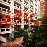 πανεπιστήμιο στο Μπαγκλαντές Στοκ Εικόνα