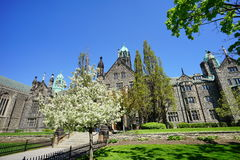 Πανεπιστήμιο του κτηρίου του Τορόντου Στοκ Φωτογραφίες