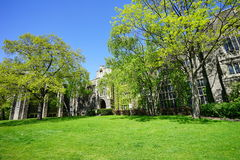 Πανεπιστήμιο του κτηρίου του Τορόντου Στοκ Εικόνα