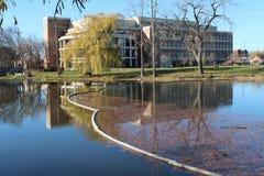 Πανεπιστήμιο του Μίτσιγκαν-πυρόλιθου Στοκ Εικόνα