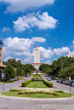 Πανεπιστήμιο του Τέξας Στοκ εικόνα με δικαίωμα ελεύθερης χρήσης