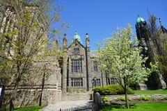 Πανεπιστήμιο του τοπίου του Τορόντου Στοκ Εικόνα