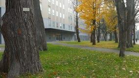 Πανεπιστήμιο του Hokkaido στην εποχή πτώσης απόθεμα βίντεο